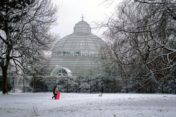 Palm-House-Winter