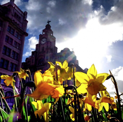 liverpool in spring